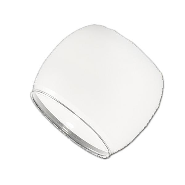 Trio Ersatzglas 92588 Lmapenglas für Serien 826410xx 429410xx 529410xx